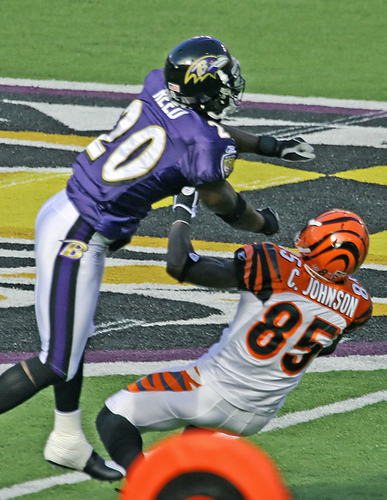 ed-reed-chad-ochocinco