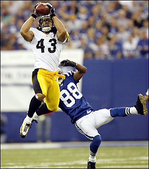 troy-polamalu2