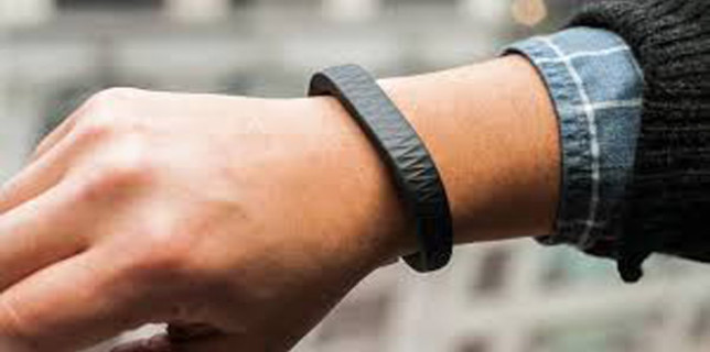 A Fitbit on the wrist beats two in the bush