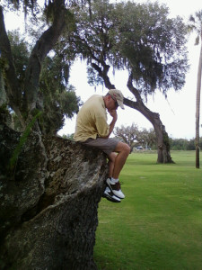 Thinker tree far
