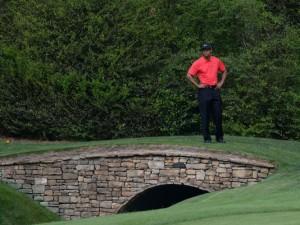 Tiger at Augusta