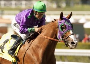 California Chrome at the 2014 San Felipe Stakes.