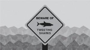Tweeting-Shark-01