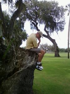 Thinker tree far